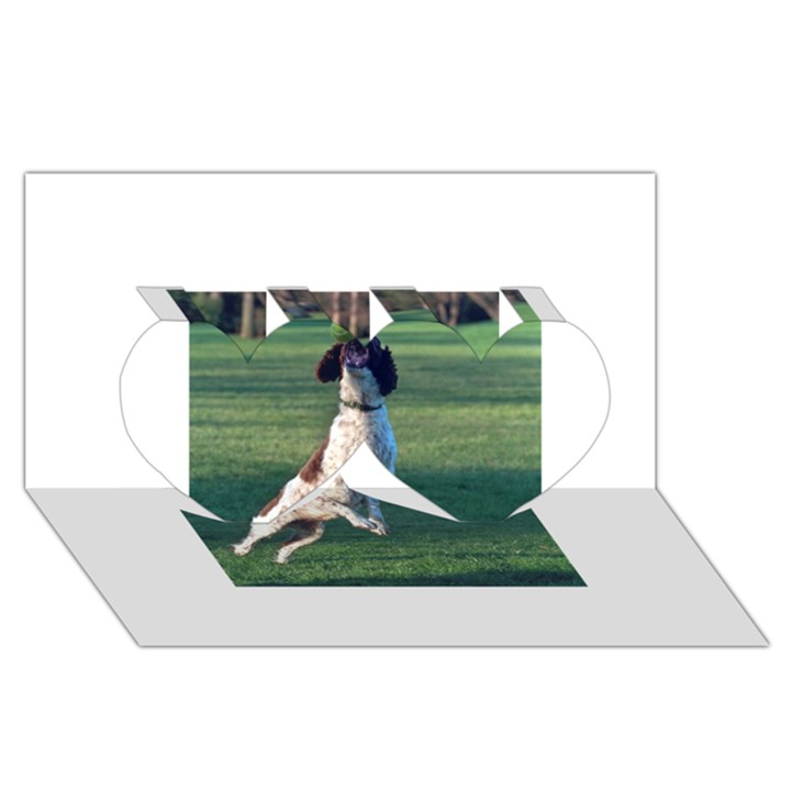English Springer Catching Ball Twin Hearts 3D Greeting Card (8x4)