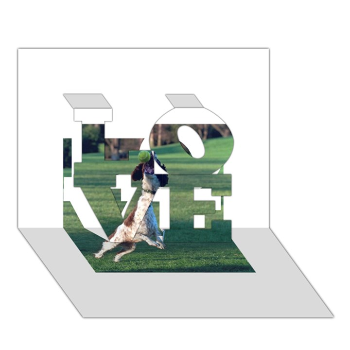 English Springer Catching Ball LOVE 3D Greeting Card (7x5)