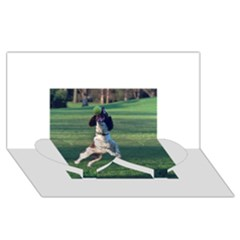 English Springer Catching Ball Twin Heart Bottom 3D Greeting Card (8x4)