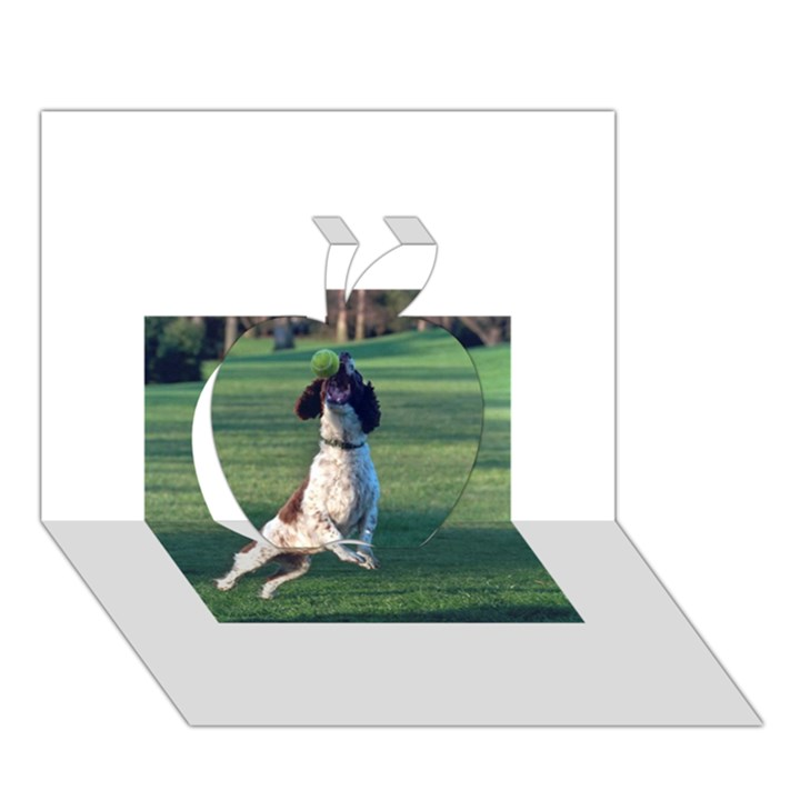 English Springer Catching Ball Apple 3D Greeting Card (7x5)
