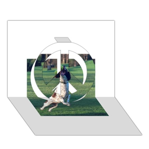 English Springer Catching Ball Peace Sign 3D Greeting Card (7x5)