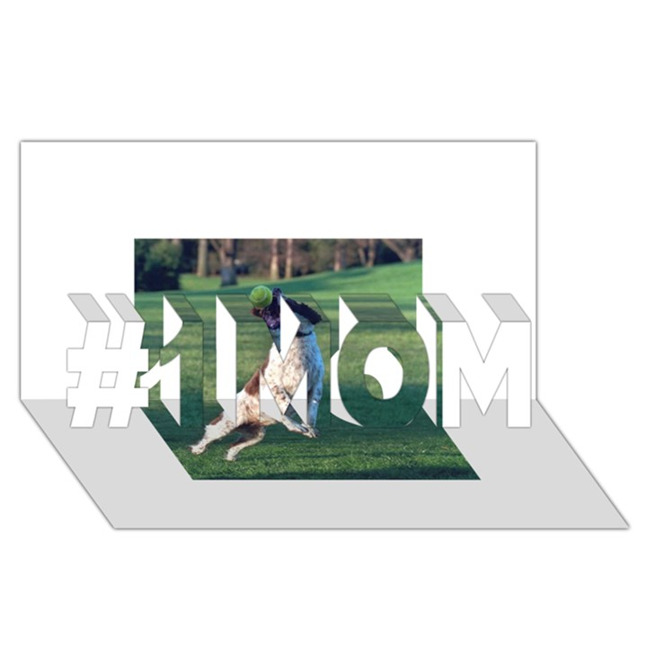 English Springer Catching Ball #1 MOM 3D Greeting Cards (8x4)