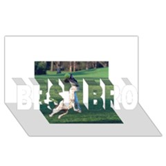 English Springer Catching Ball BEST BRO 3D Greeting Card (8x4)