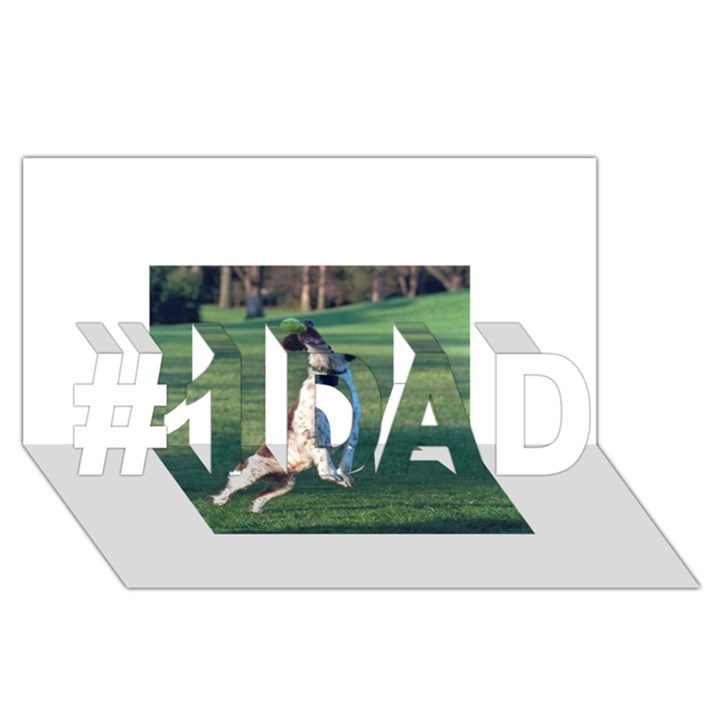 English Springer Catching Ball #1 DAD 3D Greeting Card (8x4)