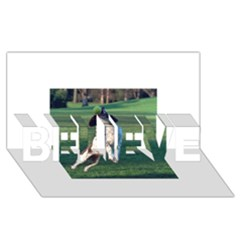 English Springer Catching Ball Believe 3d Greeting Card (8x4)