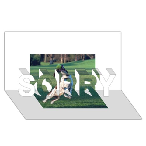 English Springer Catching Ball SORRY 3D Greeting Card (8x4)