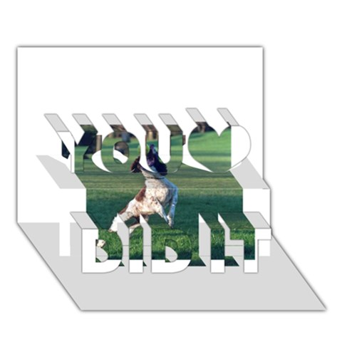 English Springer Catching Ball You Did It 3D Greeting Card (7x5)