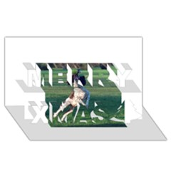 English Springer Catching Ball Merry Xmas 3D Greeting Card (8x4)