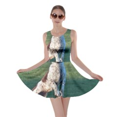 English Springer Catching Ball Skater Dress