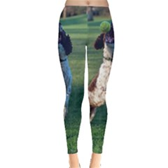 English Springer Catching Ball Leggings