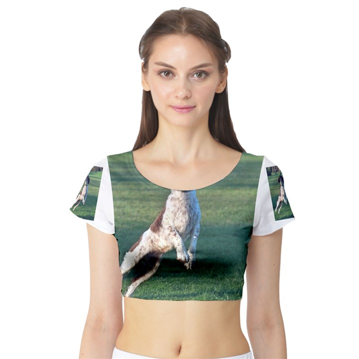 English Springer Catching Ball Short Sleeve Crop Top (Tight Fit)