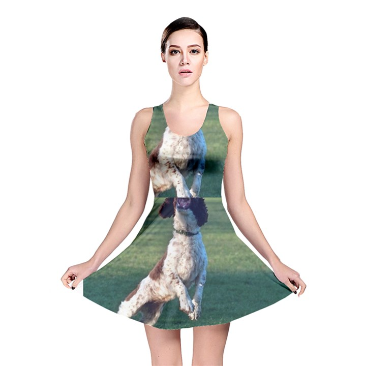 English Springer Catching Ball Reversible Skater Dress