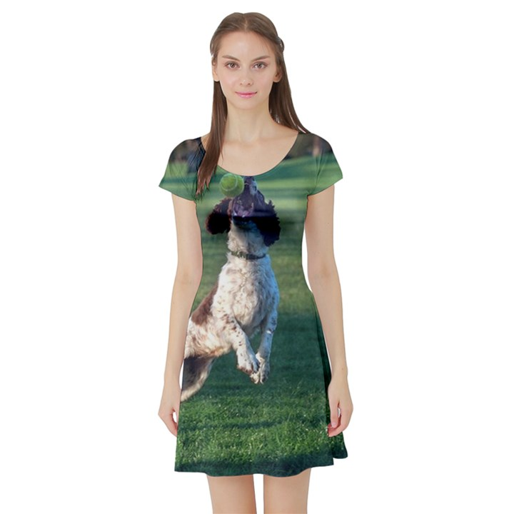 English Springer Catching Ball Short Sleeve Skater Dress