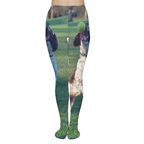 English Springer Catching Ball Women s Tights