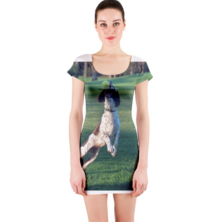 English Springer Catching Ball Short Sleeve Bodycon Dress