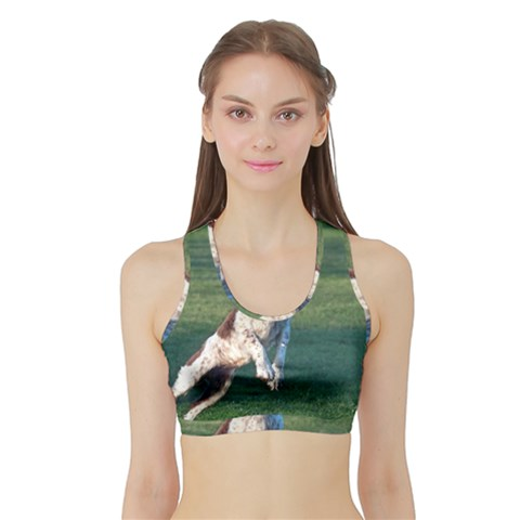 English Springer Catching Ball Sports Bra with Border