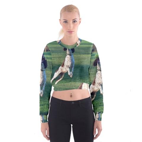 English Springer Catching Ball Women s Cropped Sweatshirt
