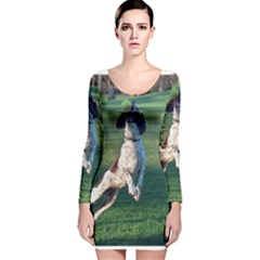 English Springer Catching Ball Long Sleeve Velvet Bodycon Dress
