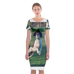 English Springer Catching Ball Classic Short Sleeve Midi Dress