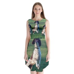 English Springer Catching Ball Sleeveless Chiffon Dress