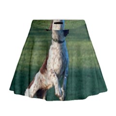 English Springer Catching Ball Mini Flare Skirt