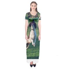 English Springer Catching Ball Short Sleeve Maxi Dress