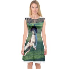 English Springer Catching Ball Capsleeve Midi Dress