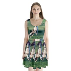 English Springer Catching Ball Split Back Mini Dress