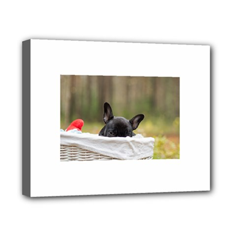 French Bulldog Peeking Puppy Canvas 10  x 8