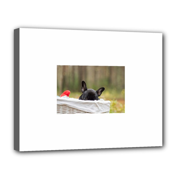 French Bulldog Peeking Puppy Canvas 14  x 11
