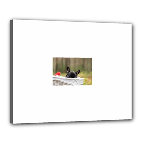 French Bulldog Peeking Puppy Canvas 20  x 16