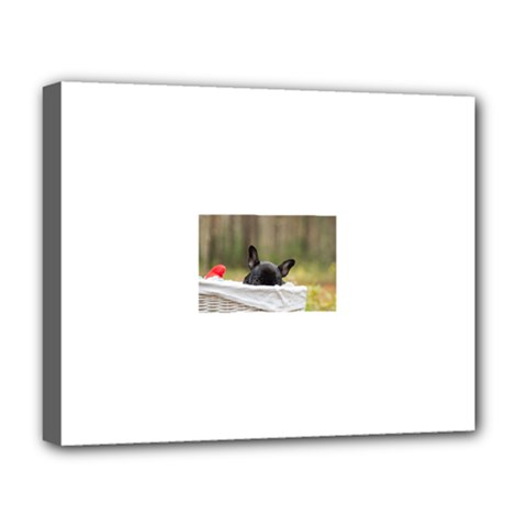 French Bulldog Peeking Puppy Deluxe Canvas 20  x 16