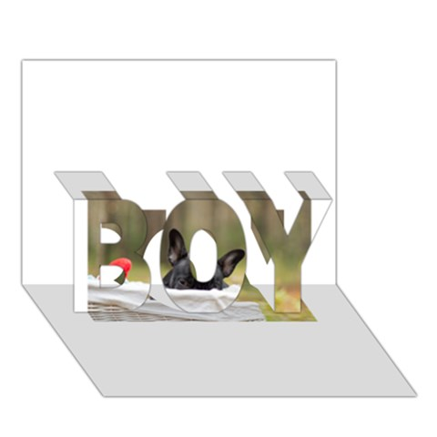 French Bulldog Peeking Puppy BOY 3D Greeting Card (7x5)