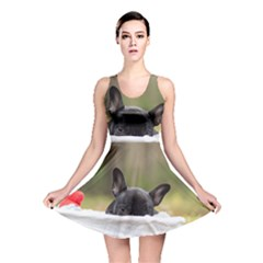 French Bulldog Peeking Puppy Reversible Skater Dress