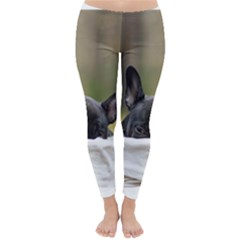 French Bulldog Peeking Puppy Winter Leggings