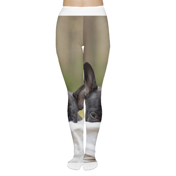 French Bulldog Peeking Puppy Women s Tights