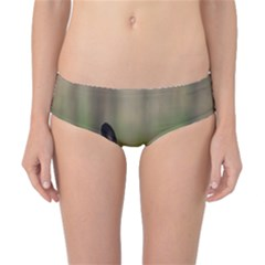 French Bulldog Peeking Puppy Classic Bikini Bottoms