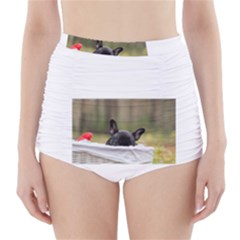 French Bulldog Peeking Puppy High-Waisted Bikini Bottoms