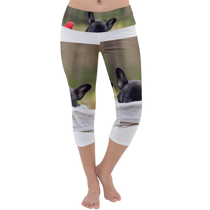 French Bulldog Peeking Puppy Capri Yoga Leggings