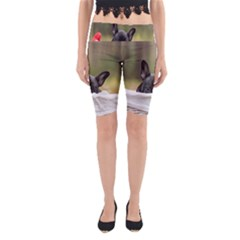French Bulldog Peeking Puppy Yoga Cropped Leggings