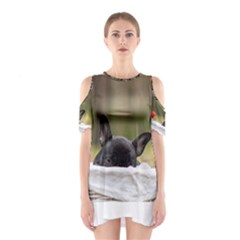 French Bulldog Peeking Puppy Cutout Shoulder Dress
