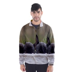 French Bulldog Peeking Puppy Wind Breaker (Men)