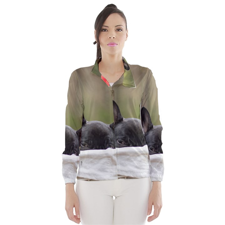 French Bulldog Peeking Puppy Wind Breaker (Women)
