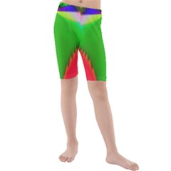 Colorful Abstract Butterfly With Flower  Kids  Mid Length Swim Shorts