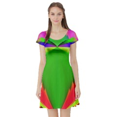 Colorful Abstract Butterfly With Flower  Short Sleeve Skater Dress