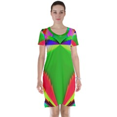 Colorful Abstract Butterfly With Flower  Short Sleeve Nightdress