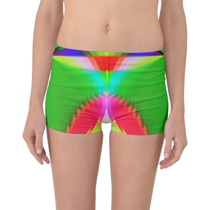 Colorful Abstract Butterfly With Flower  Boyleg Bikini Bottoms