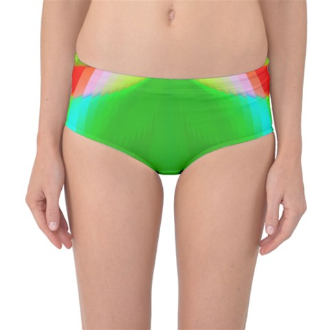 Colorful Abstract Butterfly With Flower  Mid-Waist Bikini Bottoms