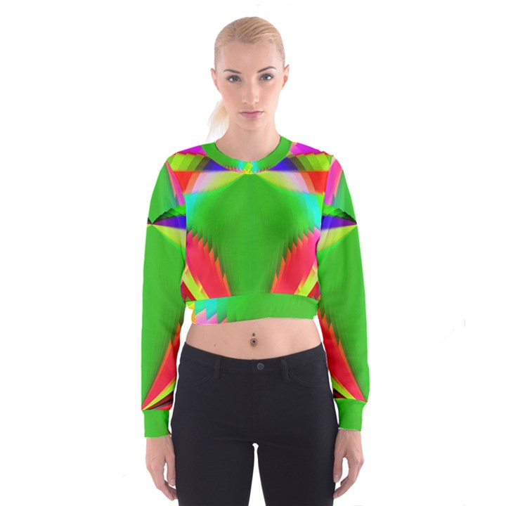 Colorful Abstract Butterfly With Flower  Women s Cropped Sweatshirt