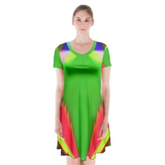 Colorful Abstract Butterfly With Flower  Short Sleeve V Neck Flare Dress